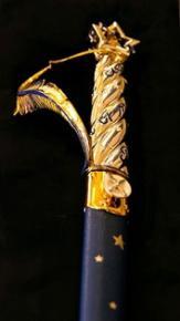 Épée de M. Xavier DARCOS